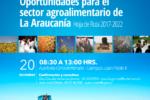 Afiche_Seminario_CGNA-UCT_20122016_V2-1
